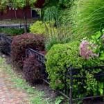 Short garden fence