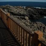 Bronze Beach Rail